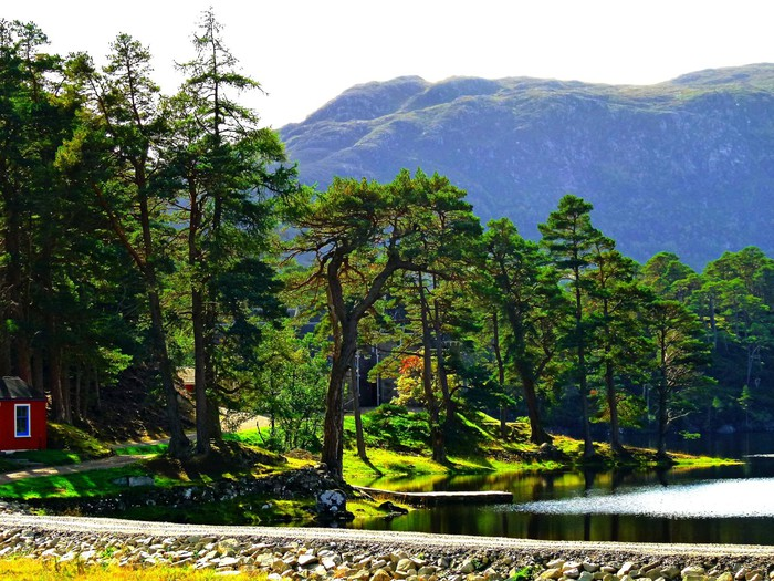 Foto de  Glen Affric Lodge